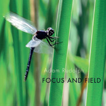 Review of Adam Rudolph & Go: Organic Orchestra: Focus And Field
