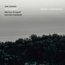 Review of Joe Lovano Trio Tapestry: Garden of Expression