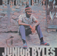Review of Beat Down Babylon