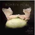 Review of Bombyx Mori