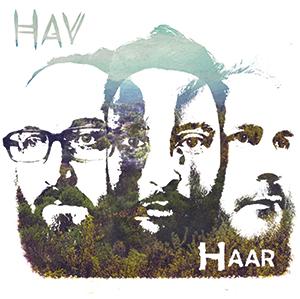 Review of Haar
