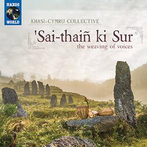 Review of 'Sai-thaiñ ki Sur