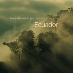 Review of Tropical Forest Project: Ecuador